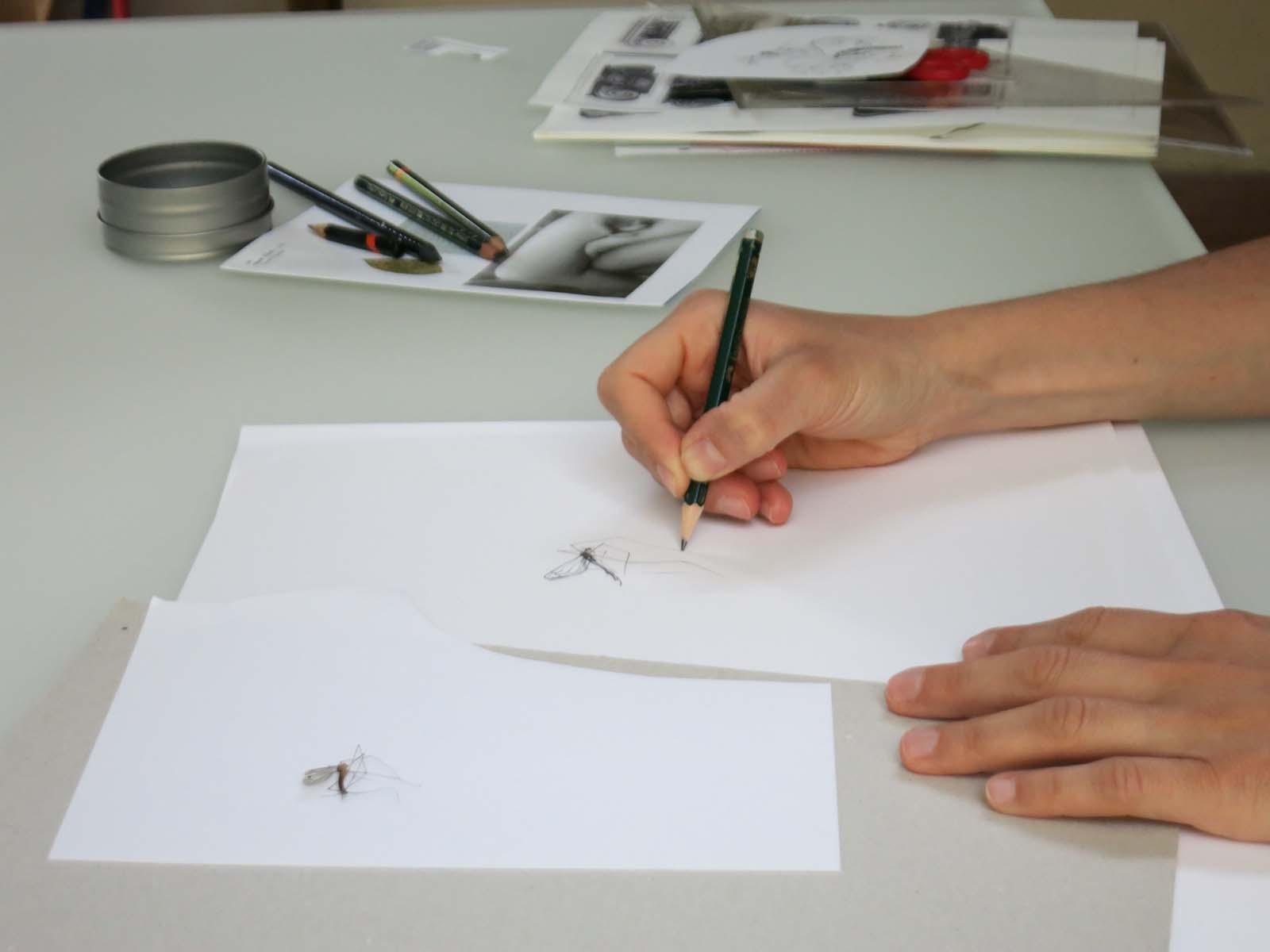 marta colombo artist isola comacina